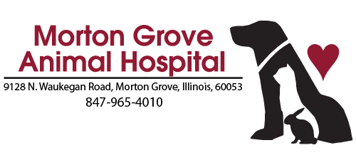 Morton Grove Animal Hospital